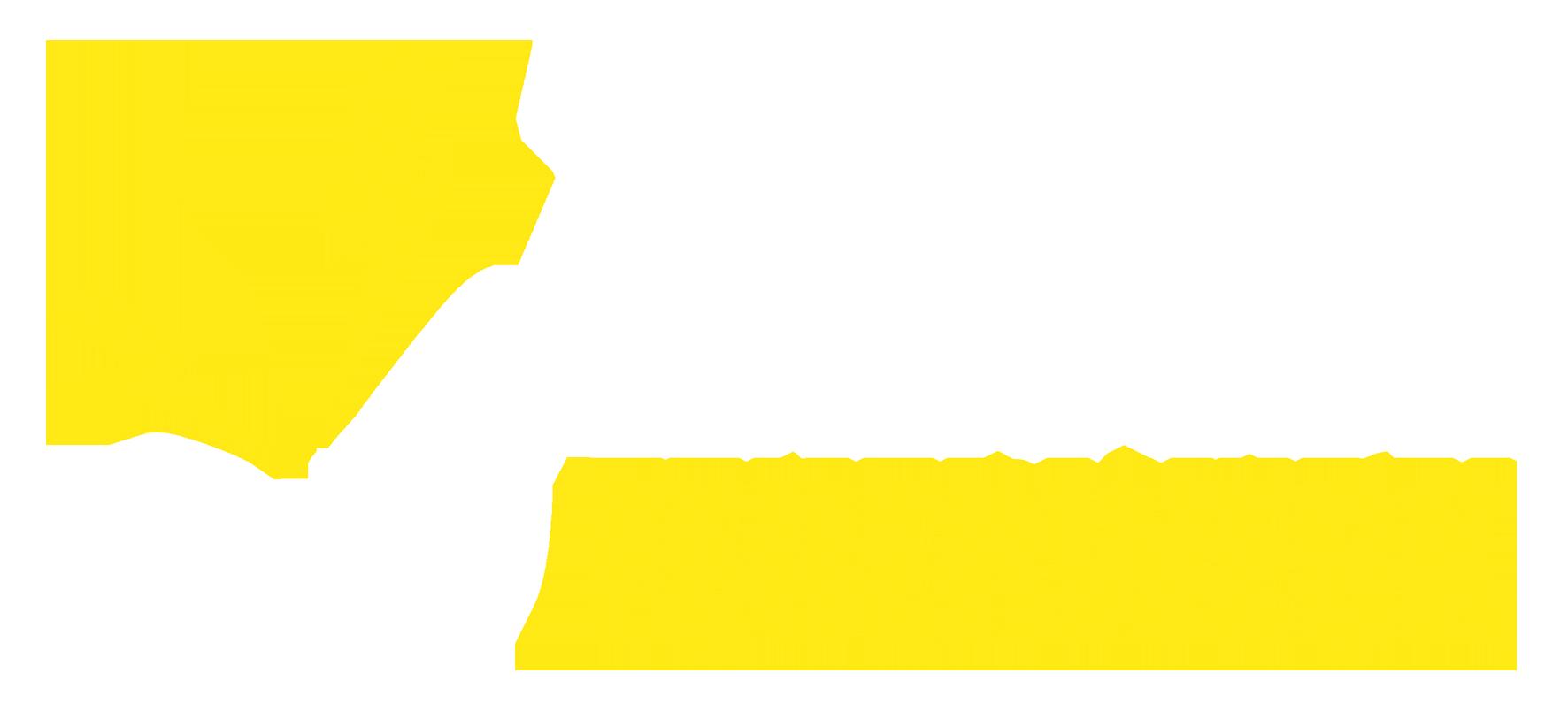 Zena feuerwerk logo